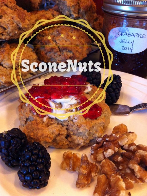 SconeNuts